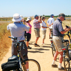 Cycling in the Algarve Coast Line - 15 days Holidays