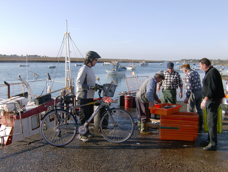 Fresh fish market, see this by cycling in the Algarve | MegaSport Travel