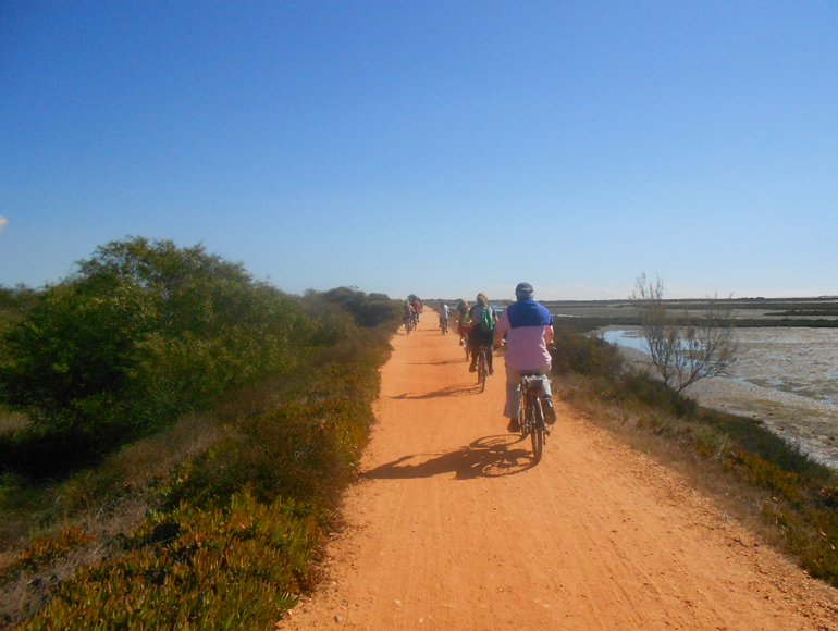 Cycling near Ria formosa: make your holidays in Algarve - Portugal | MegaSport Travel