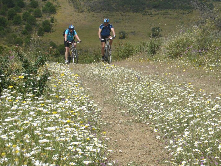 Country side tours for Algarve MTB | MegaSport Travel
