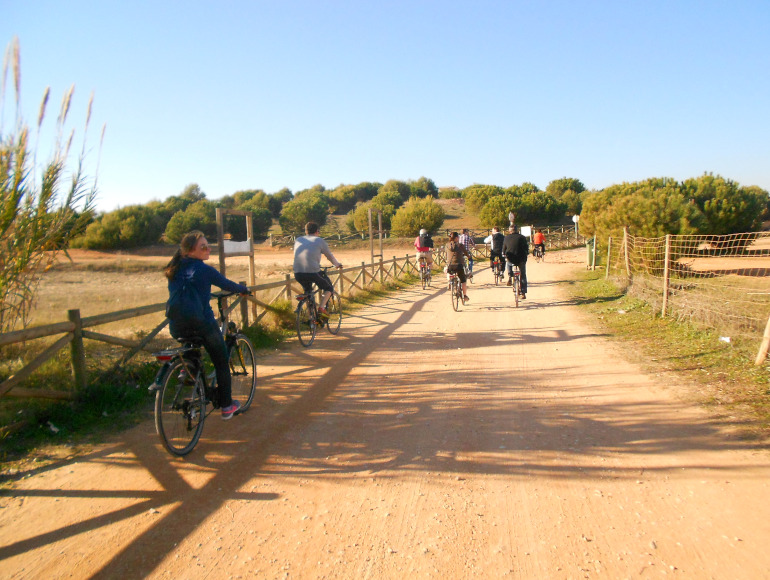 Guided tours, Cycling Vilamoura outskirts