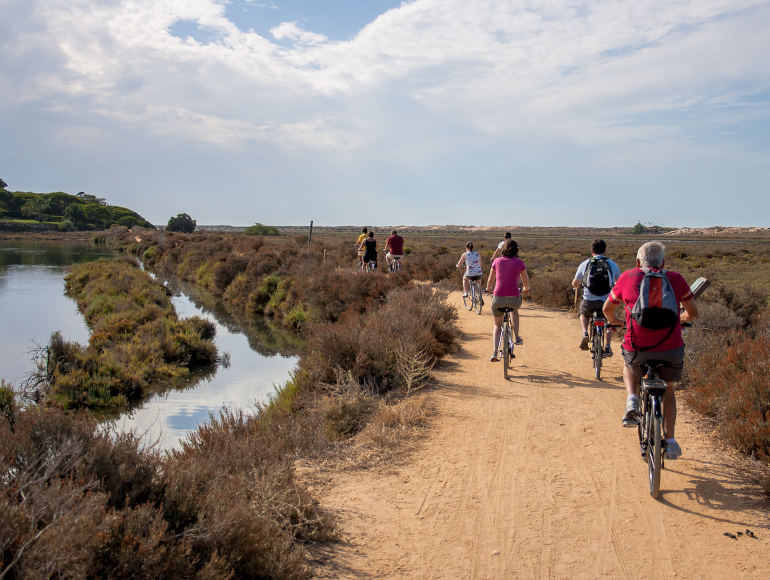 Guided Cycling Tour Ria Formosa Natural Park