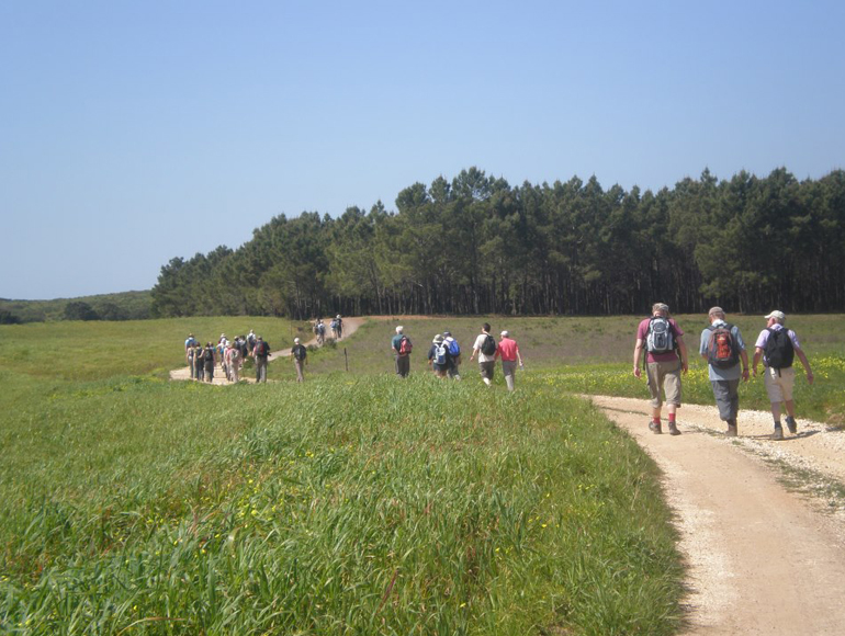 Green sights of group walking in Algarve | MegaSport Travel