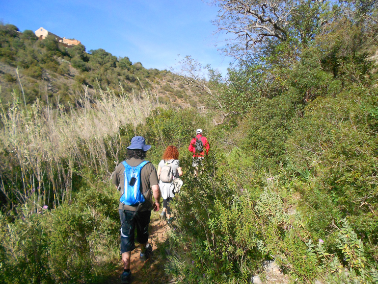 In the deep Algarve: Tours for Hiking in Algarve | MegaSport Travel